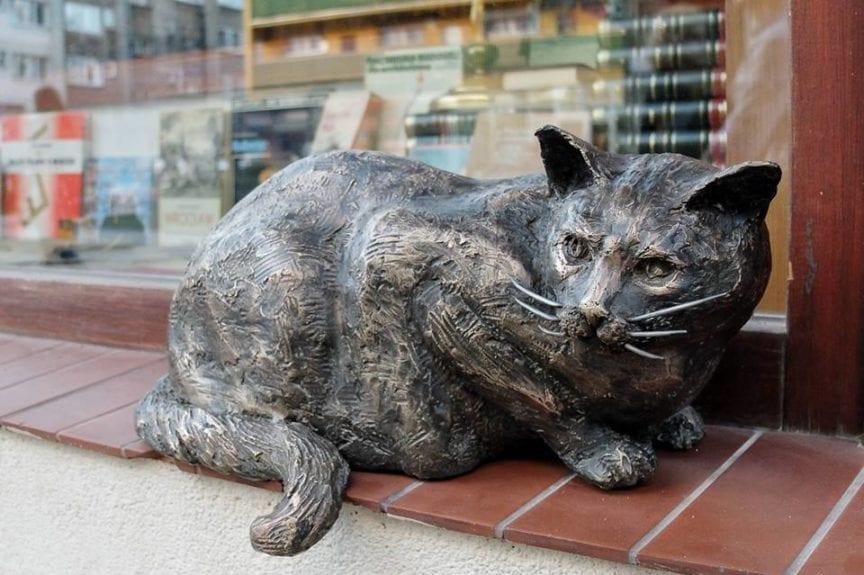 Kot Dante powrócił na parapet – pomnik przy antykwariacie przy ul. Szewskiej