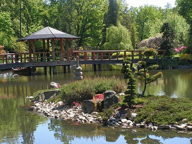 Wrocławski Ogród Japoński – jedna z najpiękniejszych atrakcji Wrocławia