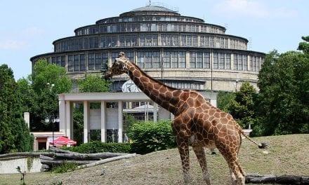 Wrocławskie ZOO, czyli najstarszy ogród zoologiczny w Polsce