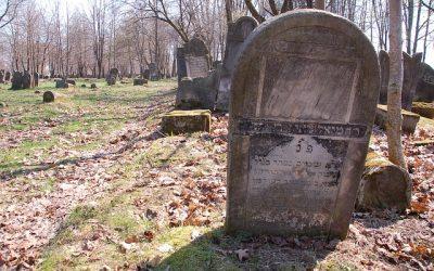 Spacer po Cmentarzu Żydowskim we Wrocławiu