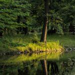 Park Szczytnicki – najstarszy park we Wrocławiu
